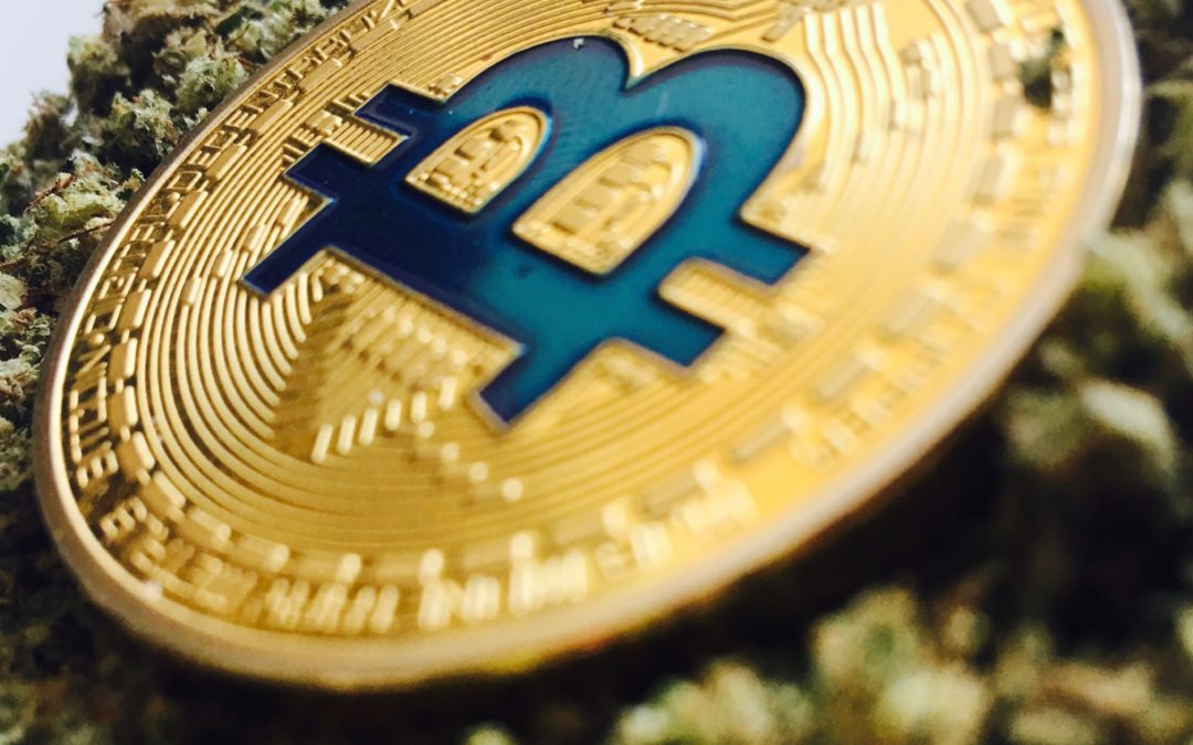 Is Marijuana the Next Bitcoin?